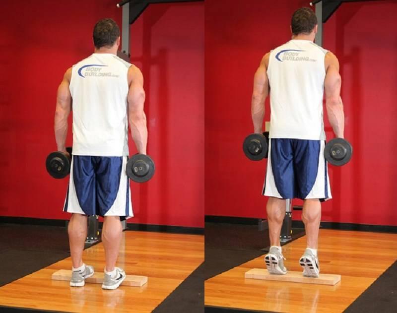 Подъем на носки стоя: техника выполнения, какие мышцы работают