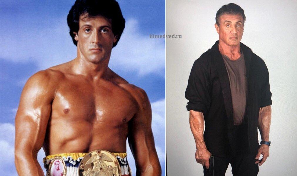 Объем бицепса сталлоне: сколько составляет и как менялся на протяжении карьеры актера