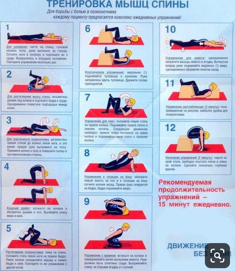 Как укрепить мышцы спины в домашних условиях - эффективные методы!