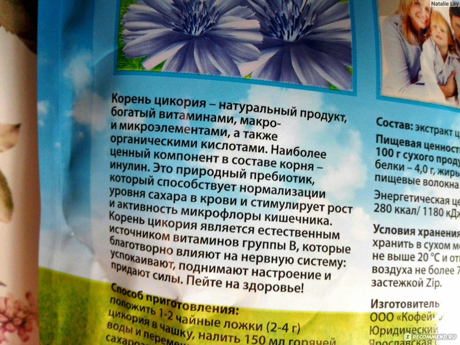 Польза и вред цикория для здоровья организма женщины, мужчины