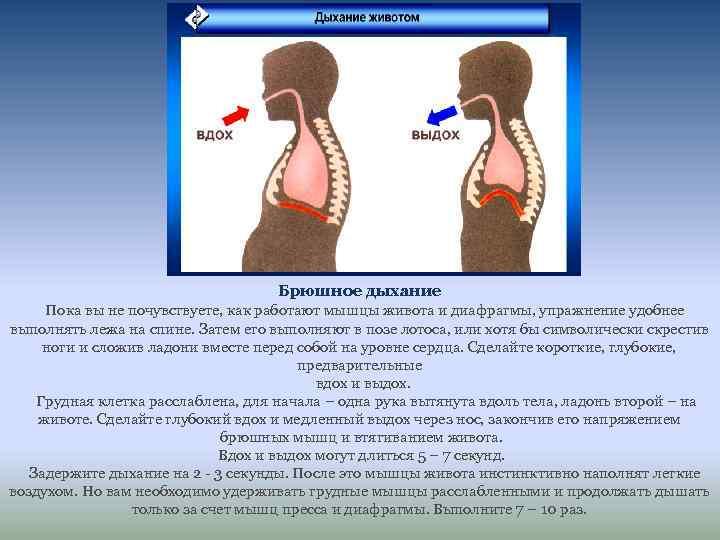 Диафрагмальное дыхание: противопоказания, техника выполнения, упражнения, польза и вред