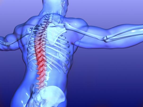 Защемление нерва в грудном отделе позвоночника: симптомы и лечение | все о суставах и связках