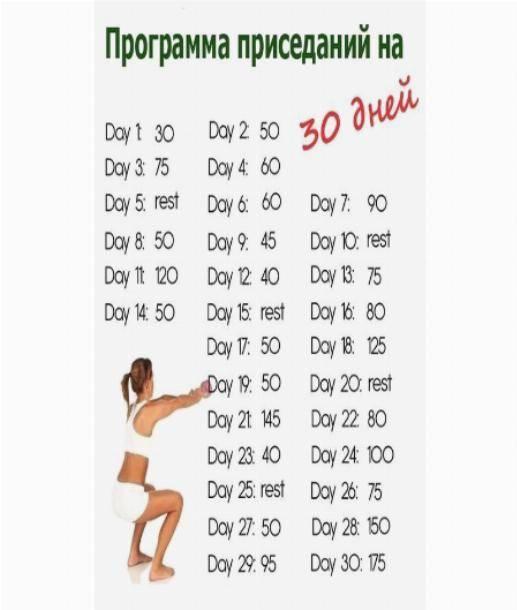 Эффективная программа тренировок для девушек