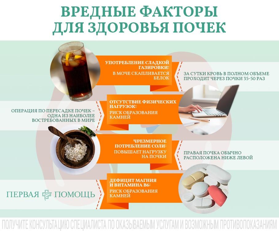 Какие продукты полезны для почек