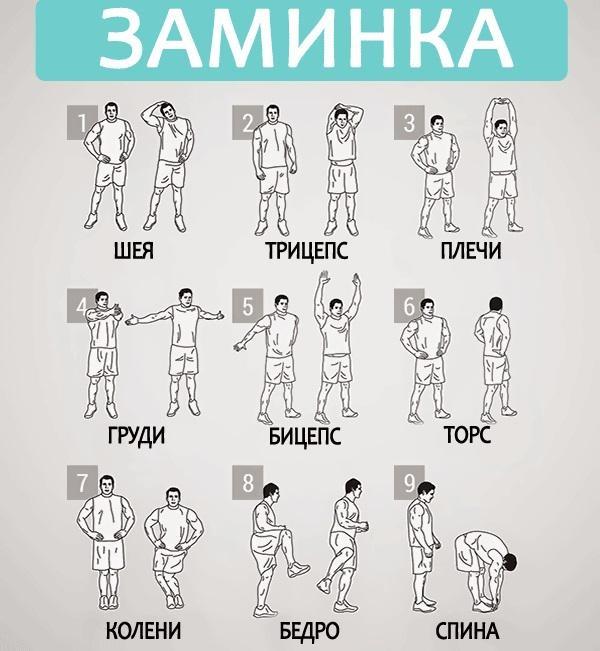 Разминка перед тренировкой: упражнения, программа, видео