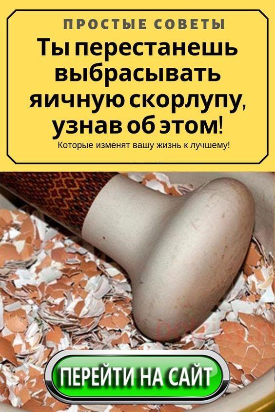 Скорлупа яиц: польза и вред, можно ли есть, применение в народной медицине