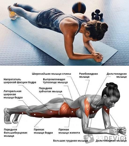 Как правильно держать планку для пресса: 30 дневная схема тренировок в стойке на локтя для похуденияwomfit