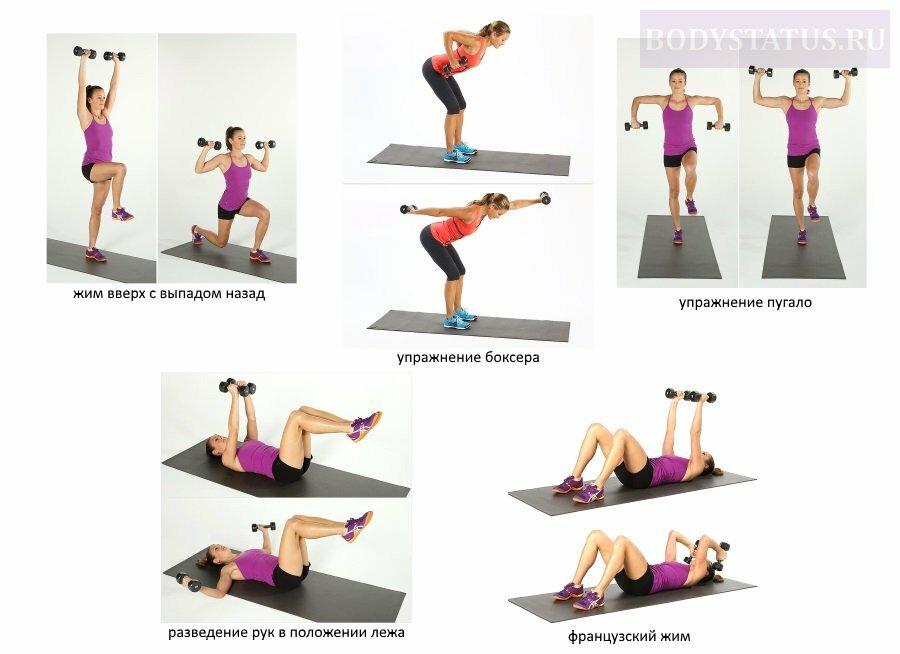 Работаем с фигурой в домашних условиях: упражнения для похудения рук, плечей и спины для девушек