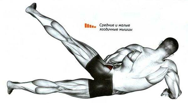 Сгибание ног в тренажёре лёжа на животе: какие мышцы работают, техника выполнения, чем заменить