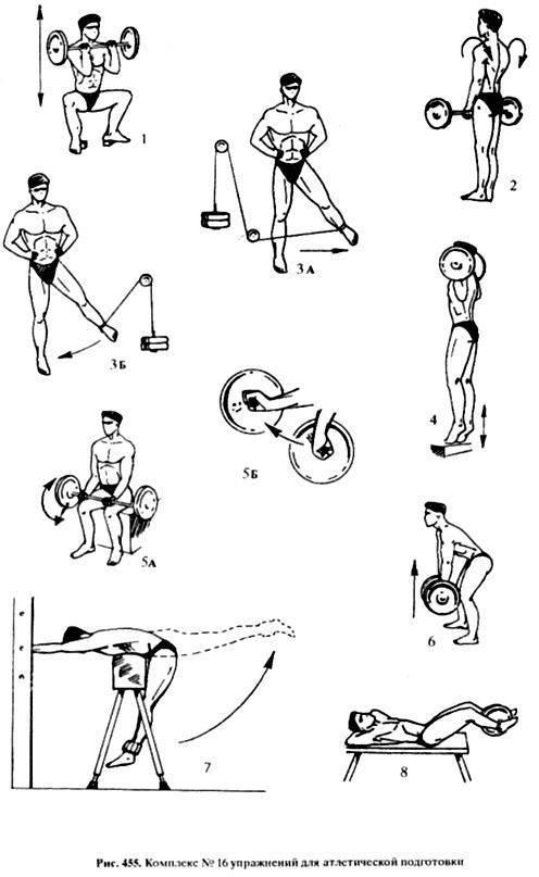 Комплексы упражнений по атлетической гимнастике для девушек. атлетическая гимнастика для женщин