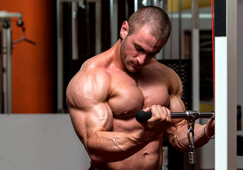 10 советов по питанию для начинающих бодибилдеров. • bodybuilding & fitness