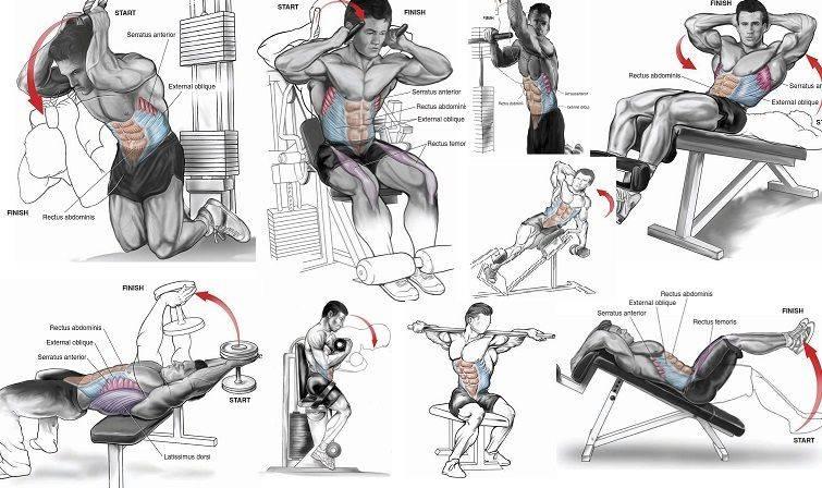 14 упражнений для нижнего пресса: прокачаем низ живота