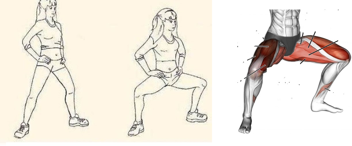 Упражнения на внутреннюю часть бедра в домашних условиях для девушек