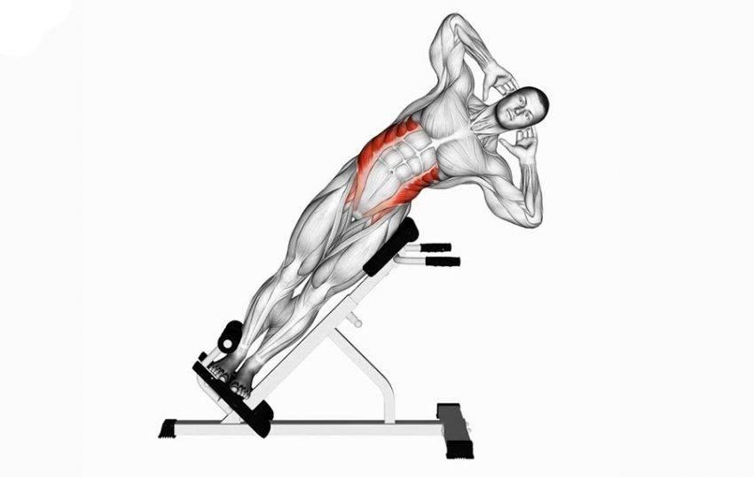 Гиперэкстензия: какие мышцы работают, техника и виды, ошибки, противопоказания