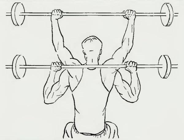 Как правильно делать армейский жим (классический жим на плечи)