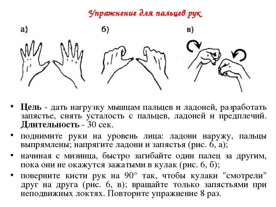 Гимнастика и упражнения для пальцев и кистей рук: зарядка и разминка