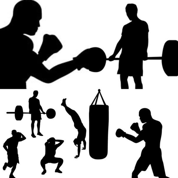 Как совмещать тренировки по единоборствам и тренажерный зал