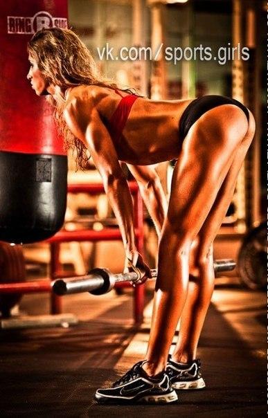 Силовой тренинг для женщин: программа тренировок и упражнения