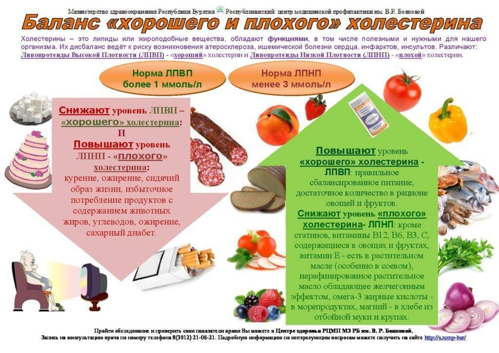 Холестерин в крови: значение, анализ и отклонения от нормы, что делать при повышенном