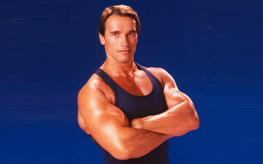 Программа тренировок арнольда шварценеггера — как тренировался знаменитый атлет?